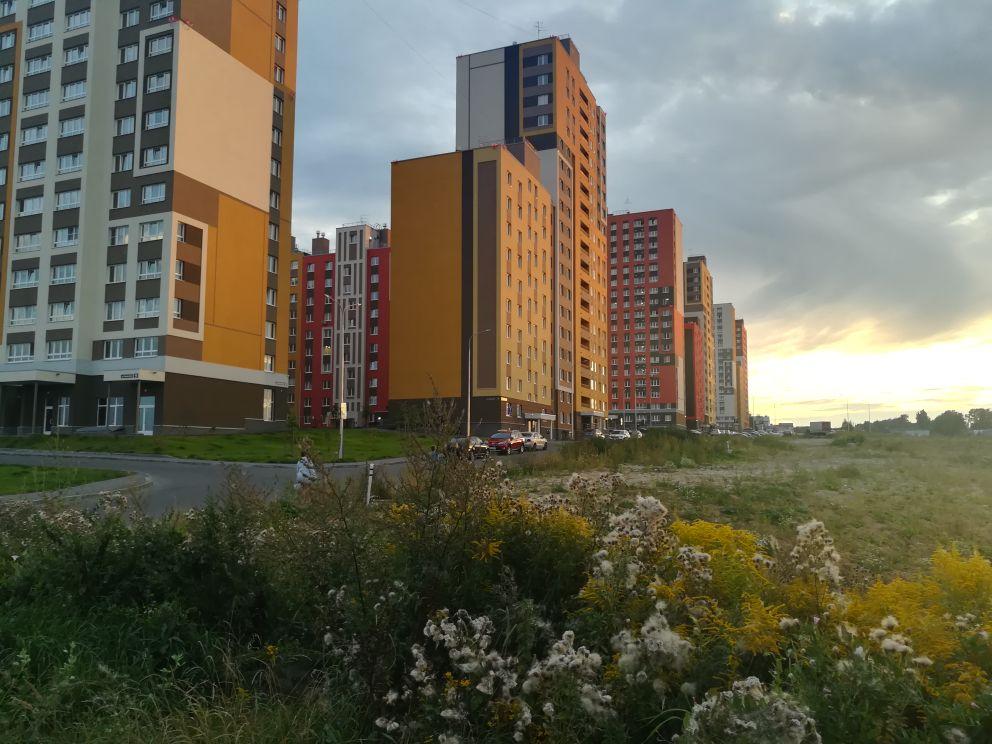 Строительство трех детских садиков задерживают в Нижнем Новгороде - фото 1